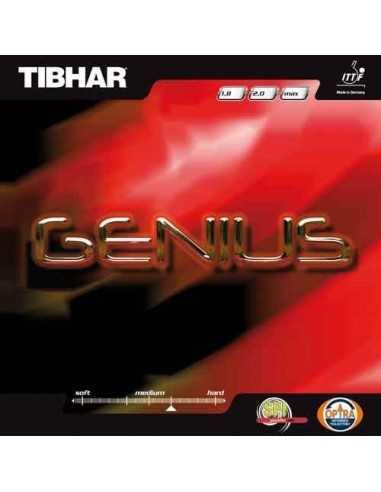 Goma Tibhar Genius