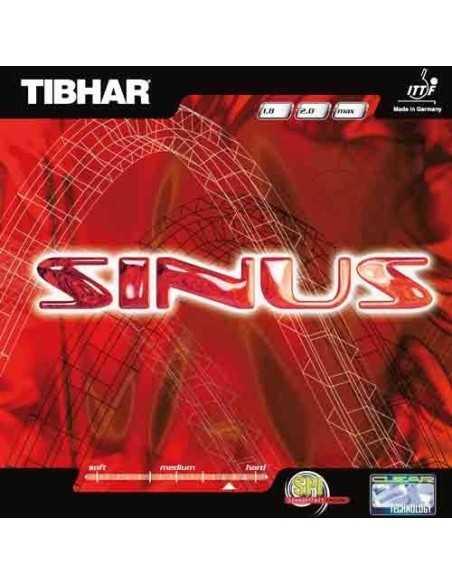 Rubber Tibhar Sinus
