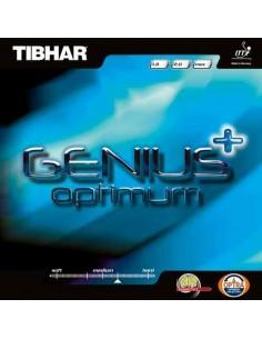 Rubber Tibhar Genius+ Optimum