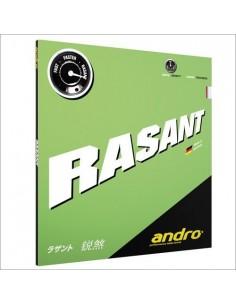 Revêtement Andro Rasant