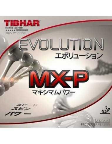 Goma Tibhar Evolution MX-P