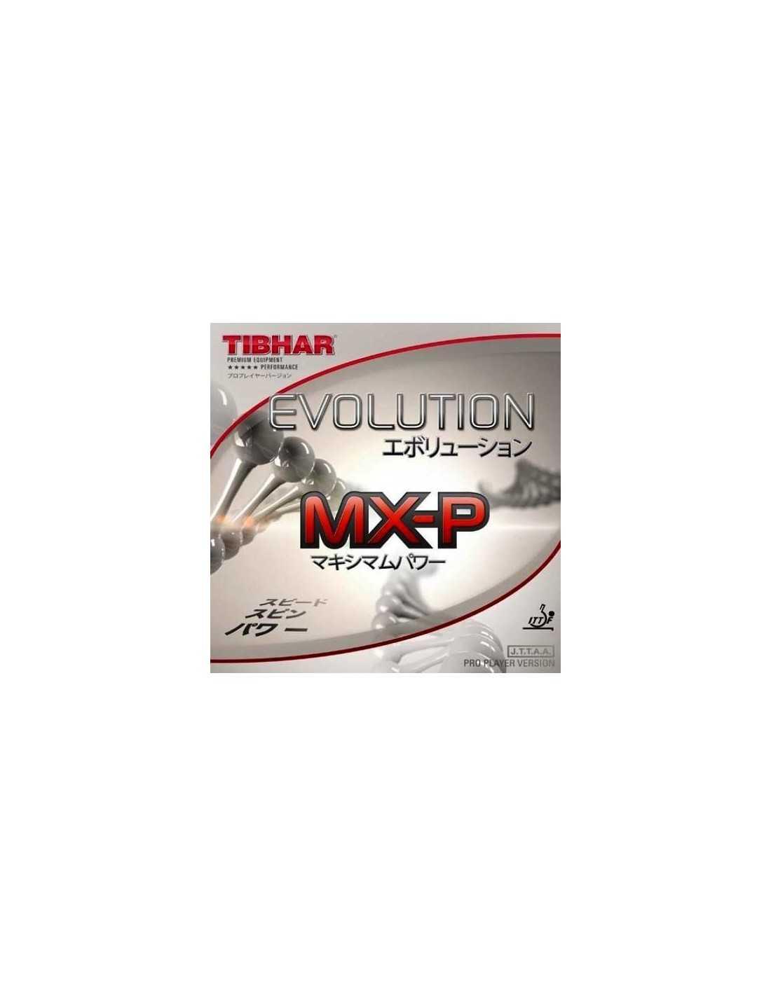 Rubber Tibhar Evolution Mx P