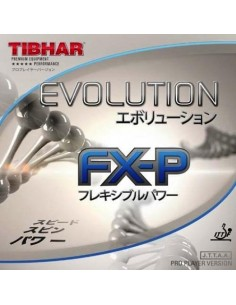 Belag Tibhar Evolution FX-P