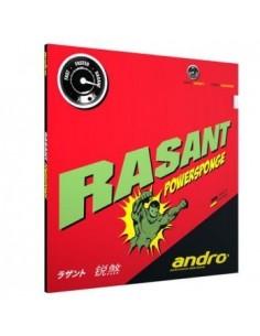 Revêtement Andro Rassant Powersponge