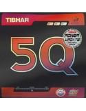 Goma Tibhar 5Q Power Update