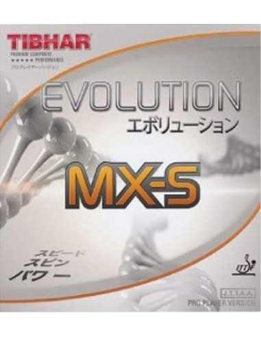 Borracha Tibhar Evolution MX-S