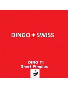 Borracha Dingo Swiss Ding Yi