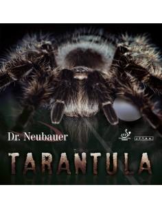 Dr. Neubauer borracha Tarantula